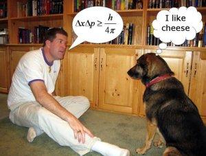 Dog communication
