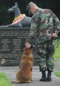 dog-vet-memorial
